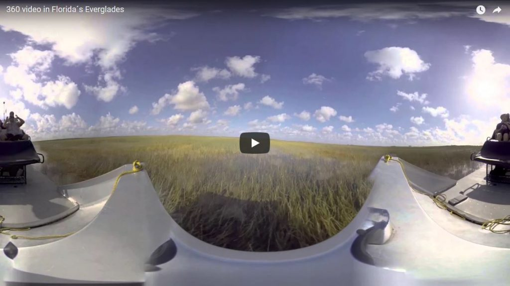 360 video florida everglades - cardboard360